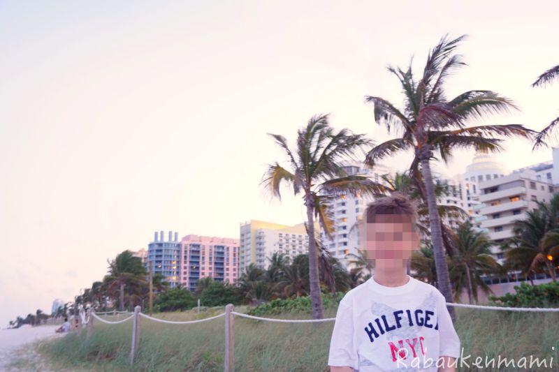 Miami10.jpg