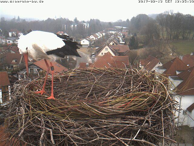 2017-02-13120300BadWaldsee.jpg