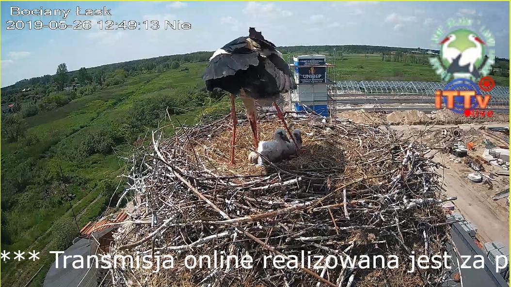 MWSnap046.jpg